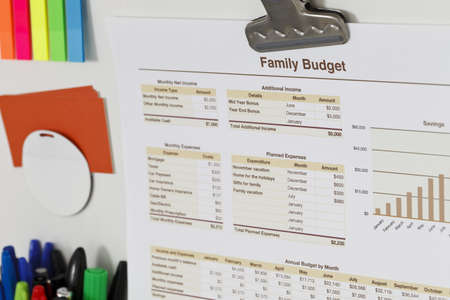 Printout of a Family Budget spreadsheet, charts and tables, stuck on a white magnetic board