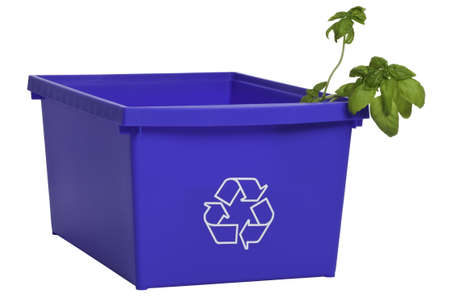Blue recycling plastic bin with plant inside. Stock Photo