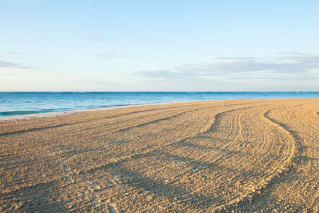 Horizontal composition of waves and footprints on a beach.