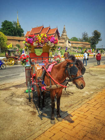 horse and carriage: Horse carriage in Lampang Thailand Stock Photo