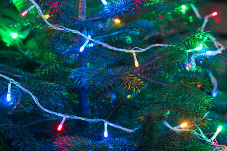green christmas lights: Christmas garland on the branches of a tree, selective focus Stock Photo