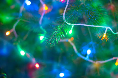 colorful lights: Christmas garland on the tree background, blurring and soft focus