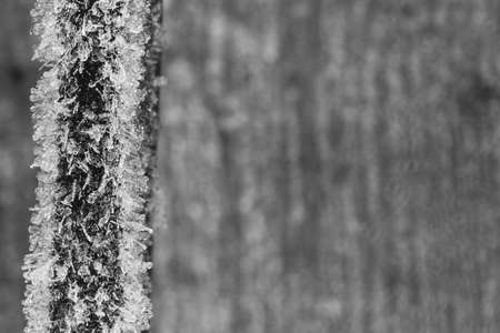 face covered: Rusty metal face covered with frost on the blurred background of wood texture. Selective focus, shallow depth of field. Black and white. Copy space. Free space for text