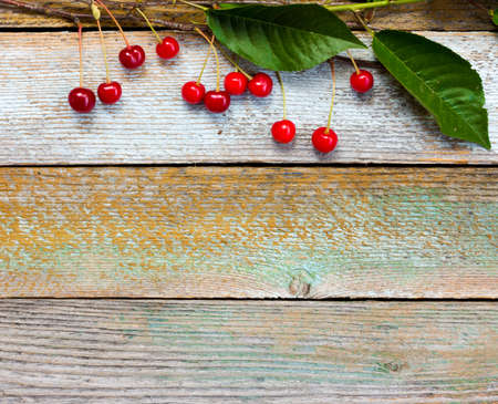 duckboards: branch with red ripe cherries on a background of old barn boards. Copy space. Free space for text Stock Photo