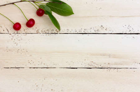 duckboards: red ripe berries of a cherry in the corner on the white horizontal boards. Copy space. Free space for text