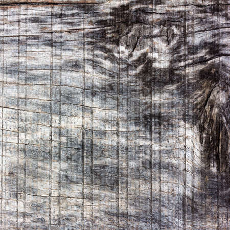 barn board: old wood texture with cracks and knots, bleached oak, barn board. Copy space. Free space for text. square photo
