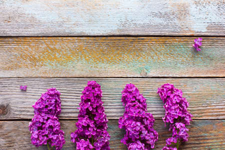 posting: branches of purple lilac flowers on wooden plank background. with space for posting information