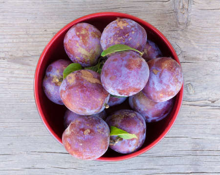 Fresh ripe plums in a red plate close-up on old gray board. top view