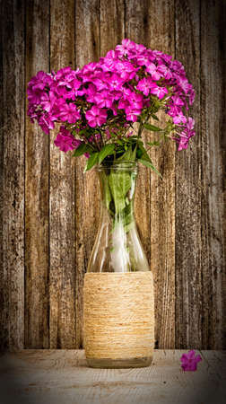 glass vase: bouquet of phlox in a glass vase on a background of old barn boards. toned photo with vignette. selective focus