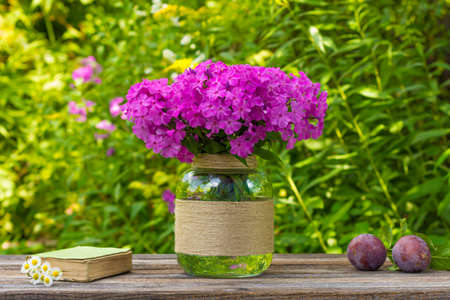 glass vase: bouquet of phlox flowers in a glass vase, ripe plums and old book with daisies on the table on nature background, selective focus Stock Photo