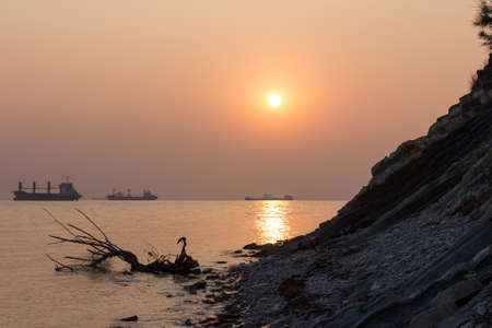 beach, driftwood and ships against the setting sun