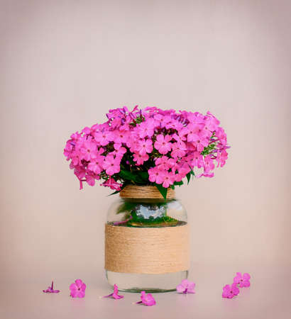 glass vase: a bouquet of flowers Phlox in a homemade glass vase closeup on pink background closeup. tinted photo