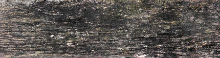 barn board: panorama of old wood texture with cracks, barn board. big size. Copy space. Free space for text