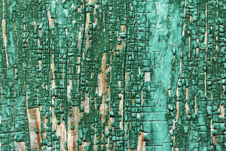 barn board: background texture of wooden barn board faded remnants of the old green paint