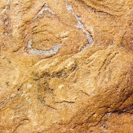 Light brown stone texture of the flagstone