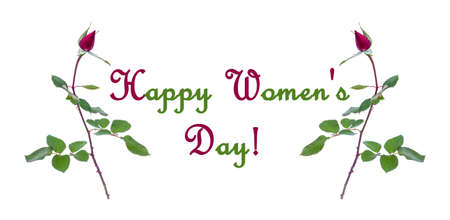 frame of Burgundy rose buds isolated on white background with words Happy women's day! Stock Photo - 114612516