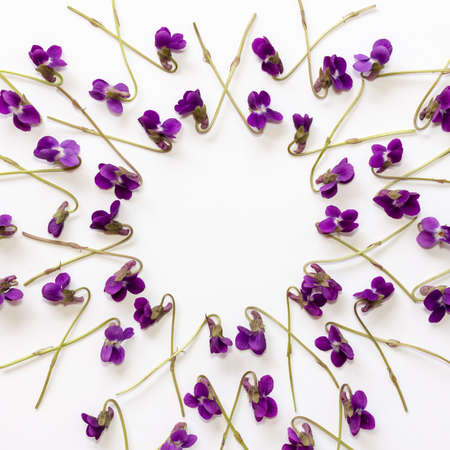 mock up background with violet flowers on white background with copy space