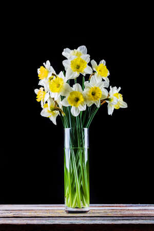 bouquet of narcissus flower in a vase on the table on a black background Stock Photo