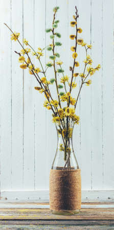 bouquet of flowering branches of willow and dogwood in a vase on the table on a white wooden background