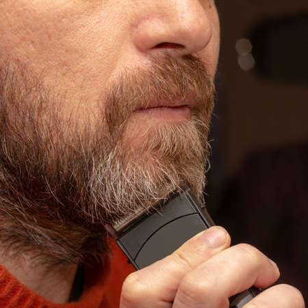 a man cuts his gray beard trimmer close-up