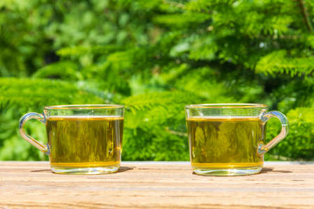 two cups of green tea on the table outdoors on a Sunny summer day, on a natural green background