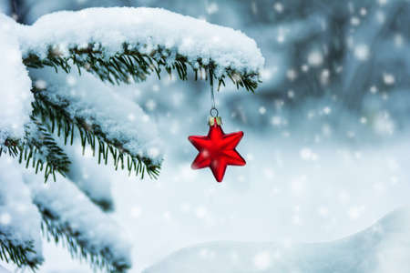 red Christmas tree toy in the shape of a star on a snow-covered branch of a Christmas tree, a snowdrift and falling snowflakes on a cold winter day