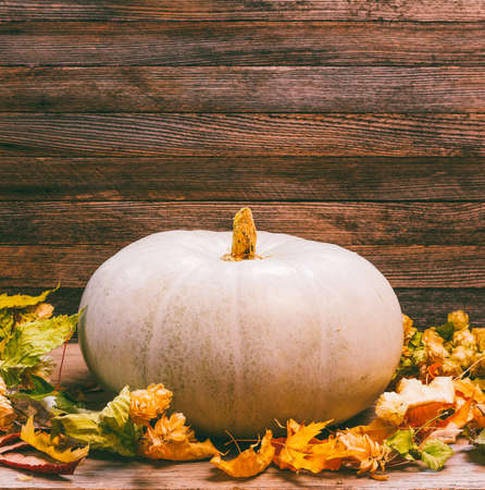 autumn still life with pumpkin and dry leaves on wooden background with space for your text closeup