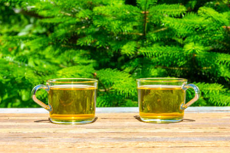 two cups of green tea on a table close-up outdoors on a Sunny summer day, on a natural green background