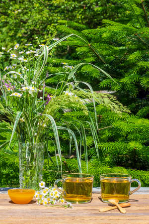 two cups of green chamomile tea, honey in a bowl, wooden teaspoons, a bunch of camomile and a bouquet of wild flowers and herbs on a table outdoors on a Sunny summer day, on a natural green background