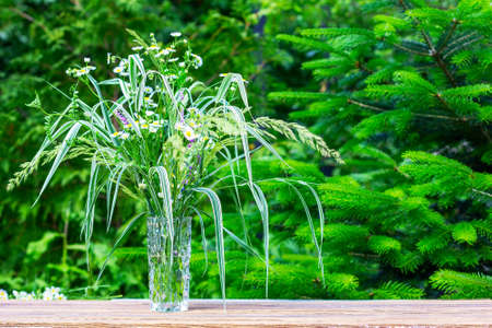a bouquet of wild flowers and herbs in a glass vase on a table close-up outdoors on a summer morning, on a green background of fir trees with a copy space 写真素材