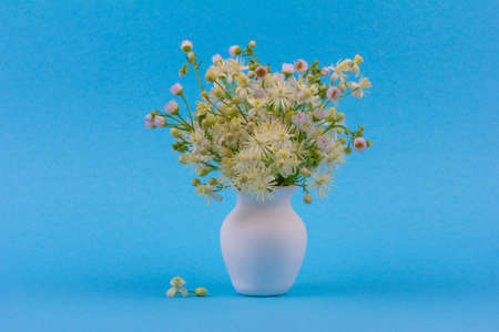 beautiful bouquet of wild flowers chamomile and clematis in a white jug on a blue background close up