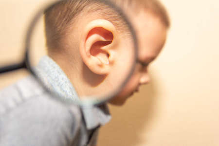 a child's ear magnified through a magnifying glass 写真素材
