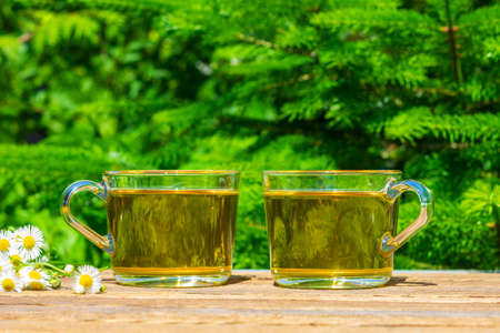 two cups of green tea and a bunch of camomile on a table close-up outdoors on a Sunny summer day, on a natural green background