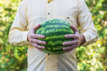 a man in a yellow shirt holds a ripe green watermelon in his hands