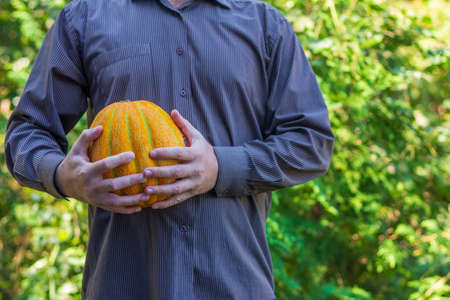 a man holds a ripe yellow melon in his hands Stock Photo