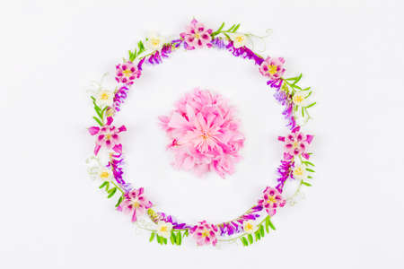 round frame of pink aquilegia flowers and green grass and a pink peony in the middle on a white background top view