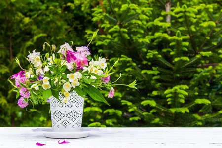 bouquet of aquilegia, jasmine and clover flowers in a white vase on a white table on a green natural background with a copy space Stock Photo