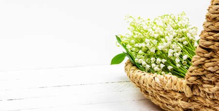 bouquet of white lily of the valley flowers in basket on white wooden background with copy space Stock Photo