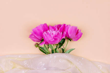 Bouquet of dark pink peony flowers close up and pink fabric on sand color background
