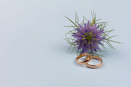 a pair of gold wedding rings with a blue flower on a blue background with a copy space