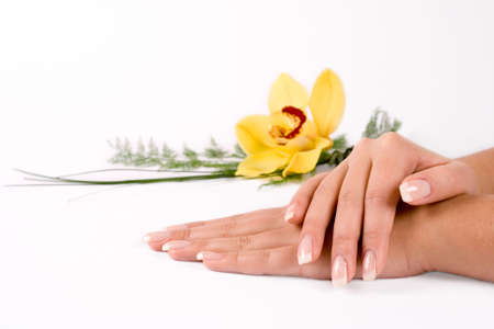 manicure: Nails with flower on white Stock Photo