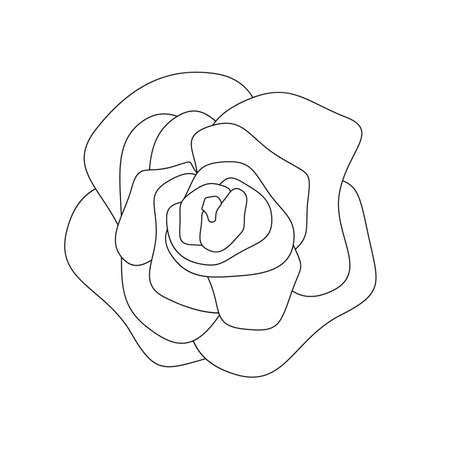 Abstract flower in contour style. Blooming rose icon. Modern flower in a linear style. Vecteurs