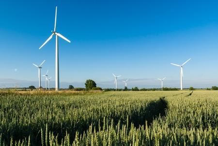 wind farm: Construyen planta e�lica en Alemania