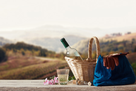 picknick: White Wine for one Person in a mediterranean Landscape