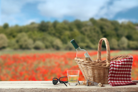 picknick: Picnic for a single Person in a countryside Landscape