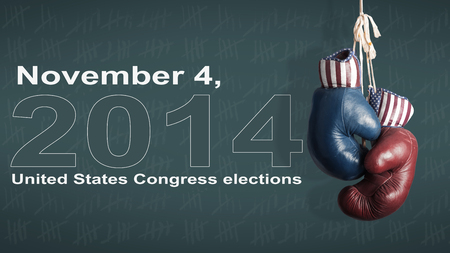 house donkey: Election Day 2014 - Democrats and Republicans in the campaign Stock Photo
