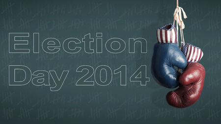 Election Day 2014 - Democrats and Republicans in the campaign photo