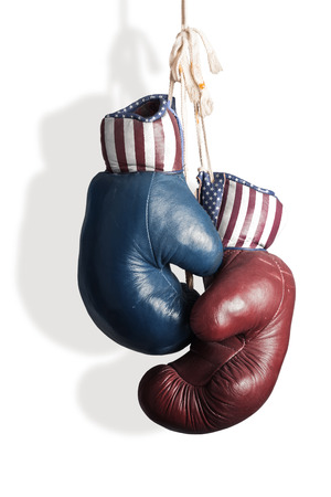 Election Day 2014 - Democrats and Republicans in the campaign Standard-Bild