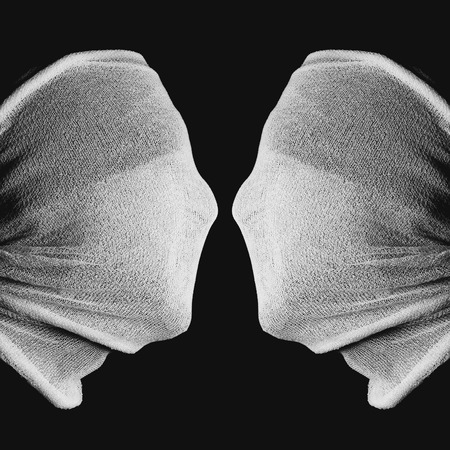 janus: optical Illusion - a Chalice or two Faces