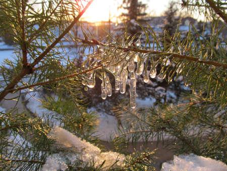 wintertime Stock fotó